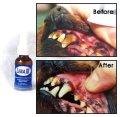 【口内環境を整える液体歯磨き】LEBA3(リーバスリー)送料込み