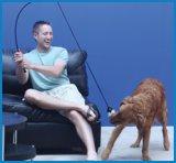 【たっぷり運動! 】犬用釣竿おもちゃ テイルティーザー