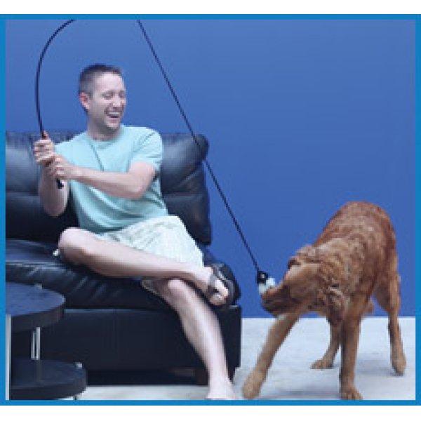 画像1: 【たっぷり運動! 】犬用釣竿おもちゃ テイルティーザー