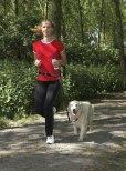 画像2: 【手ぶらでお散歩】PetSafeハンズフリーリード (2)