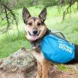 画像6: 【軽い犬用リュック】アウトワードハウンド・クイックリリースバックパック