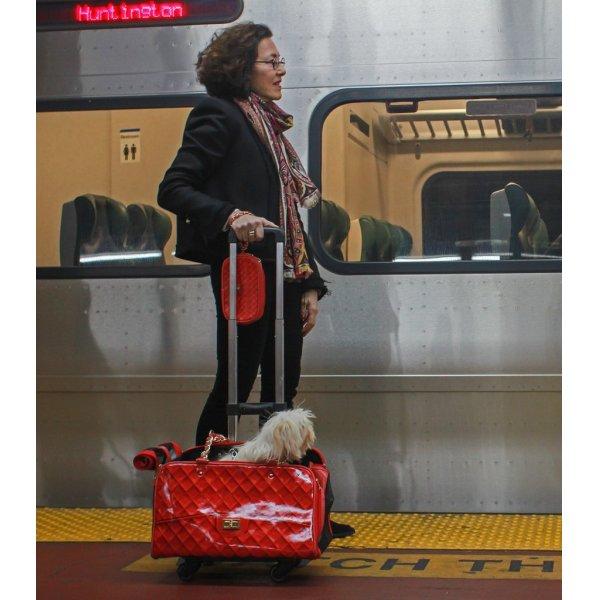 画像1: 【外せる車輪カート付ペットキャリー】ココペットキャリー★今なら2000ポイント付★