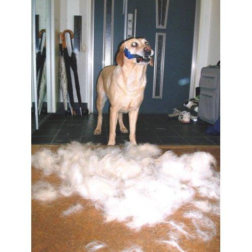 関連商品2: 【最新商品/送料込】ファーミネーター長毛&短毛用犬・猫ブラシ